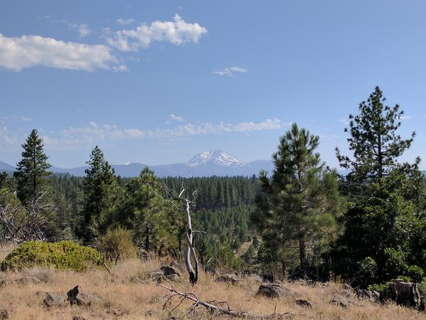 PCT Day 16 - Section O